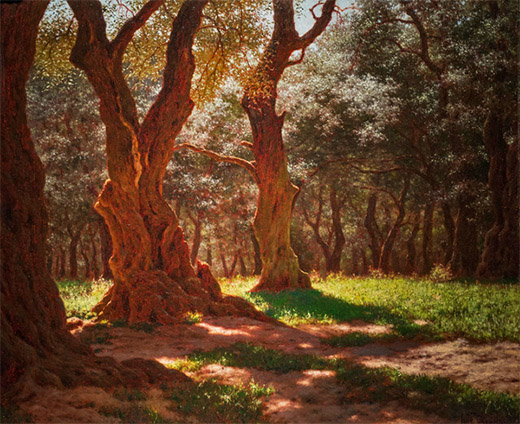 'Olive Grove' by Schultze